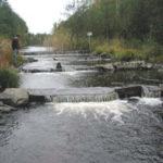 En bild från norra delen av Svåga älv.
